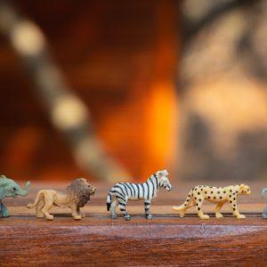 Spielplatz – Familien in freier Wildbahn