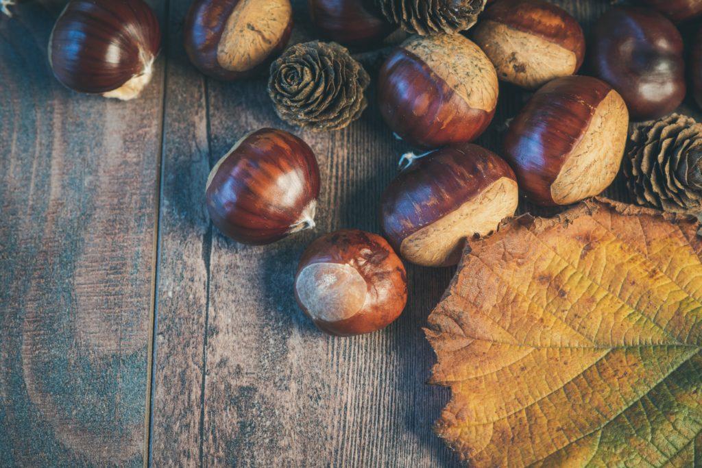 Marroni gehören zum Herbst dazu wie die farbigen Blätter. Mit diesem Rezept bringst du sie in deine Küche.