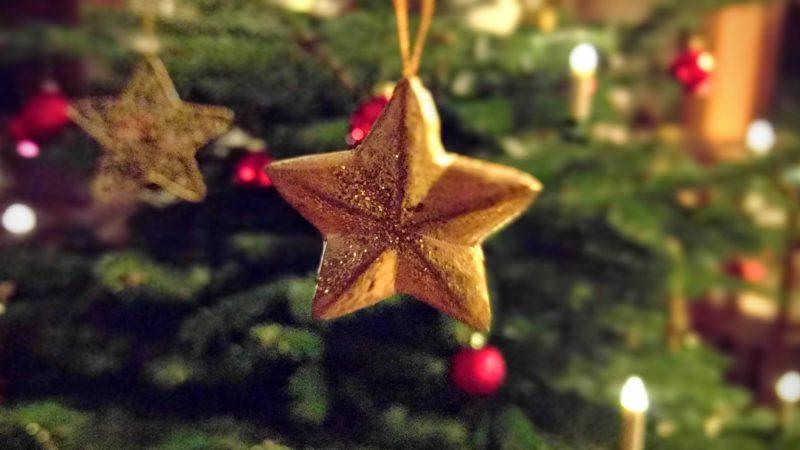 Weihnachtsstern – Pepita und das Wunder